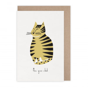 CARTE GROS CHAT